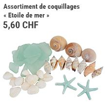 Assortiment de coquillages « Etoile de mer »